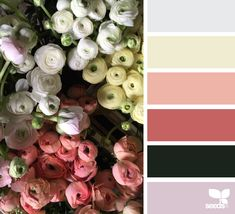 Design Seeds celebrate colors found in nature and the aesthetic of purposeful living. Colour Schemes, Color Combos, Color Patterns, Colour Palettes, Design Seeds, Paleta Pantone, Color Balance, Colour Board, Color Stories