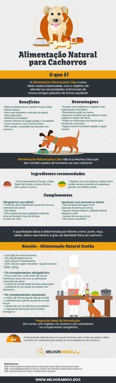 Alimentação Saudável para cachorros/infográfico #alimentaçãonatural