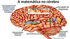 Neurociências em benefício da Educação!: Senso numérico - importância para a fluência matem...