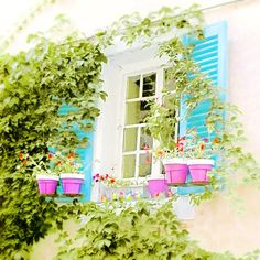 Shabby Chic French Village Window Photograph Fuchsia Pink Flower Box Photo Turquoise Blue Shutters #countryfrench