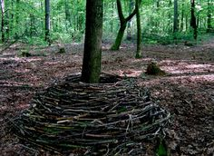 Andy Goldsworthy 3000357.jpg (735×538)