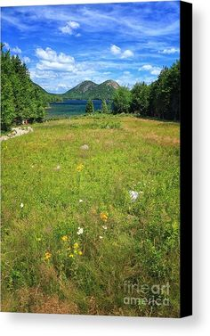 Jordan Pond Canvas Print featuring the photograph Never Tire Of This View by Elizabeth Dow