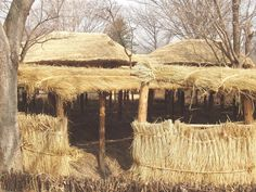 straw structures, Korean cultural center