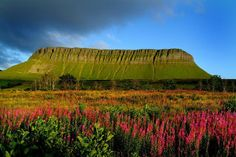 County Sligo, Ireland - going in winter this year but will definitely have to go back in spring me thinks