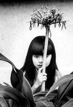 http://UpCycle.Club UpCycle Art & Life #HistoryProject presents Asymptotic Giant Branch - from A World of Girls by Nobuyoshi Araki (1983) @upcycleclub