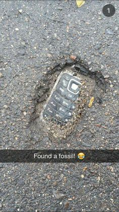 found -Fossil found! found - 30 Try Not To Laugh At These Hilarious Meme Pictures Funny Memes - Funny animals have always been an internet sensation. They've got what it takes to make us laugh, especially when . Funny Shit, Crazy Funny Memes, Really Funny Memes, Stupid Memes, Funny Relatable Memes, Haha Funny, Funny Posts, Funny Cute, Funny Stuff