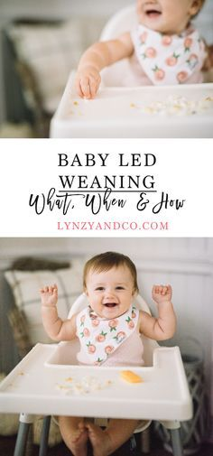 Baby Led Weaning: What, When & How / How to Wean Your Baby / Introducing Solids / Baby Led Self Feeding Tips // Lynzy & Co. Baby Led Weaning First Foods, Baby Weaning, Weaning Toddler, Introducing Solids, Solids For Baby, Homemade Baby Foods, Newborn Care, Infant Care, Toddler Meals