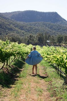 audrey wilkinson winery hunter valley