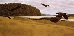 Alex Colville Seven Crows oh my, how I wish you were on my wall Alex Colville, Superflat, Canadian Painters, Canadian Artists, American Artists, Pop Art, Magic Realism, Figure Painting, Art And Architecture