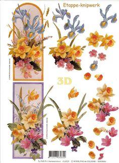 FELICITERI 3D - 2 - Alina Lazar - Picasa webbalbum