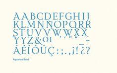 Types Vol. 2 by POGO , via Behance