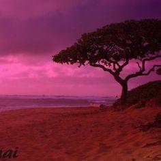 Magenta sunset on Kauai