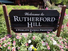 Rutherford Hill Vineyards, Napa Valley, California   #MacGrillHalfPricedWine