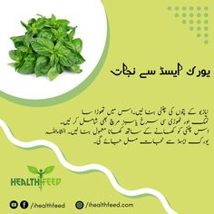 Daily health and beauty tips in urdu Good Health Tips, Natural Health Tips, Health And Beauty Tips, Herbal Remedies, Home Remedies, Full Body Gym Workout, Uric Acid, Dark Spots, Kitchen Tips