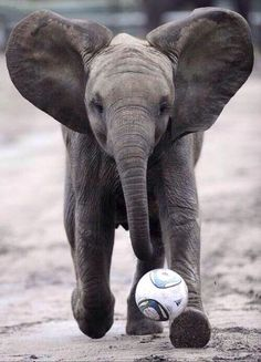 Nandi playing soccer c:= <3