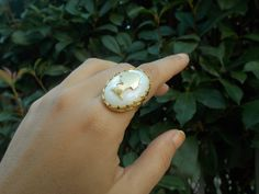 Searching for love behind the trees! Searching, Gemstone Rings, Trees, Gemstones, Collection, Jewelry, Jewlery, Search, Gems