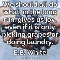 We should all do what in the long run gives us joy even if it is only picking #grapes or doing laundry. E.B. White  #quote