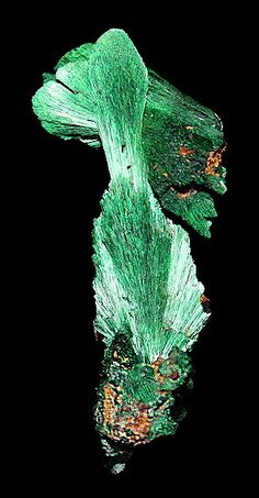 Brilliant sprays of chatoyant Malachite