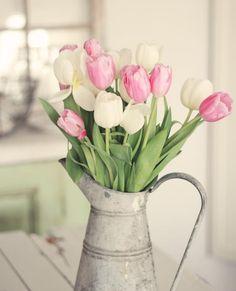 Cinco flores para decorar tu casa en primavera