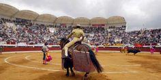 Vic-Fezensac - The Pentecost Feria - Gers dept.www. Basketball Court, France Area, Travel