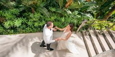 Bride And Groom Pictures, Wedding Pictures, Luxury Wedding, Wedding Bride, Miami Beach Edition, South Florida, Lush, Greenery, Backdrops