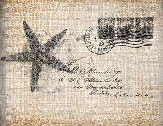 Antique Vintage Starfish Beach Ocean Postcard от AntiqueGraphique