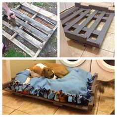 Old pallet turned into a dog bed!