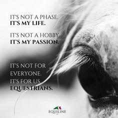Life, passion...and only we, the equestrians, feel like it is!