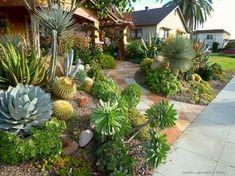 Fresh and beauty frontyard landscaping ideas (19) #DesertLandscape