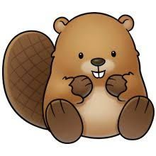 cute beaver illustrations - Google Search