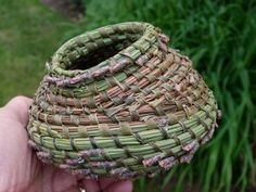 Chamaerops humilis et aiguilles de pin @LVS2 Rope Basket, Basket Weaving, Pine Needle Baskets, Pine Needles, Crochet, Knitting, Couture, Crafts, Gardens