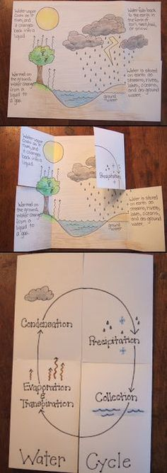 need to use with grade.notice how the book physically represents the water cycle.not just a worksheet Water Cycle Foldable. need to use with grade.notice how the book physically represents the water cycle.not just a worksheet 6th Grade Science, Middle School Science, Elementary Science, Science Classroom, Science Fair, Teaching Science, Science Education, Science For Kids, Earth Science