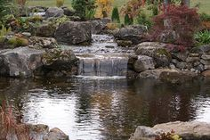 Custom pond water feature
