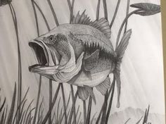 Fish sketch-Option #5 is the most difficult of all the sketches and challenges both your drawing and detail skills of shading.  The complex detail of the fish makes this sketch the most appealing.