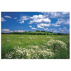 PE FOTO MURAL 8P 8254 MARGARIT-Sodimac.com Cortarlo en 3 o 4 y usarlo como windows xD