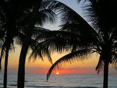 Xpu-Ha Beach, Riviera Maya, México.  The sun rises are amazing. I took this in Feb 2017 whilst staying at Catalonia  Royal Talum Hotel.