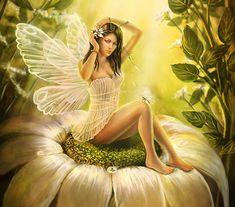 Fairy - Fantasy Wallpaper ID 447205 - Desktop Nexus Abstract