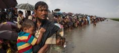 According to Amnesty International, more than Rohingya refugees, mostly children, and women, fled Myanmar and crossed into neighboring Bangladesh. Charitable Giving, The Verge, Amnesty International, Journey, Children, Young Children, Boys, Kids, The Journey