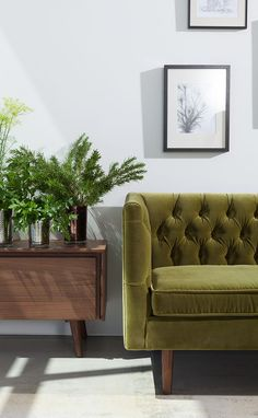 8 best olive green couches images green sofa living room decor rh pinterest com