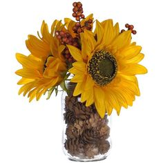 Yellow Sunflower Mason Jar Arrangement ($13) ❤ liked on Polyvore featuring home, home decor, floral decor, flowers, yellow home decor, artificial flower stems, yellow home accessories, clear glass jars and flower arrangement