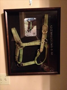 Horse shadow box. In memory of...   My best friend @Lacey Anderson  made this. Soooo beautiful!