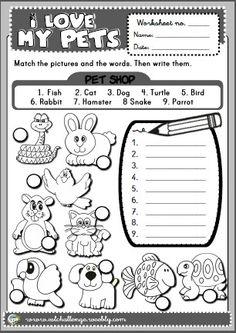 pets - worksheet