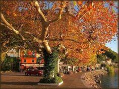 Autumn in Garda Lake Italy