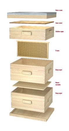 Learn how to put together your own hive.