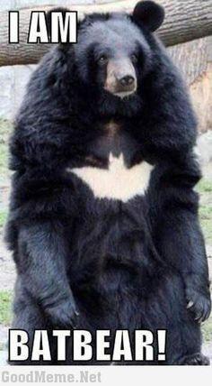 #Humor #Funny #Jokes  … Top 20 humorous Dark Knight Rises quotes and memes