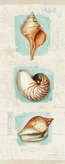 Coastal Jewels Panel II by Lisa Audit art print