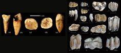 New Hominin Site Found in China [Past Horizons, Images: PEI Shuwen]