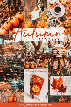 Vsco, Photography For Beginners, Camera Settings, Nature Pictures, Lightroom Presets, Orange Color, Pumpkin, The Incredibles, Autumn
