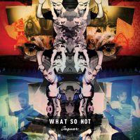 JAGUAR (Original Mix) by What So Not on SoundCloud