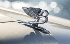Das geflügelte B weist dem Bentley den Weg